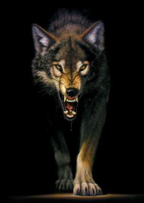 Bezpośrednie Proste Emanacje Bogów Na Ziemi I Ich Zwierzęce