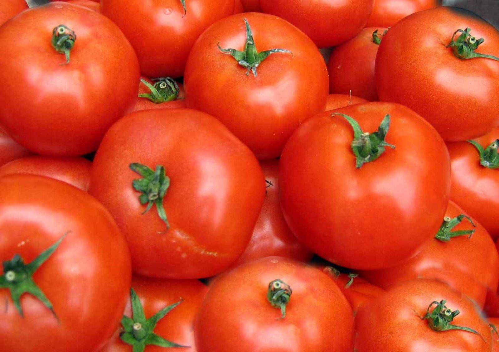 aa tomatoe